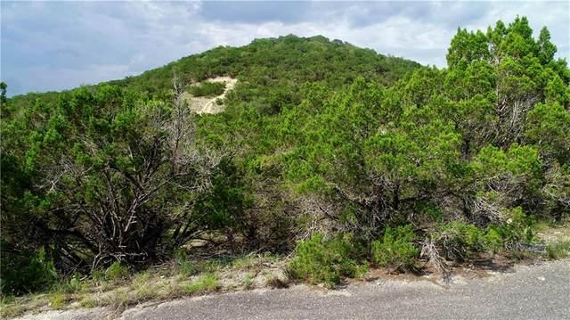 21404 Westward Ho Pass, Lago Vista, TX 78645 (#7992866) :: The Perry Henderson Group at Berkshire Hathaway Texas Realty
