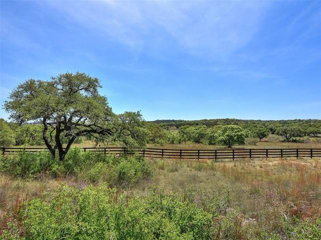 27231 Haynie Flat Rd, Spicewood, TX 78669 (#8082873) :: Front Real Estate Co.