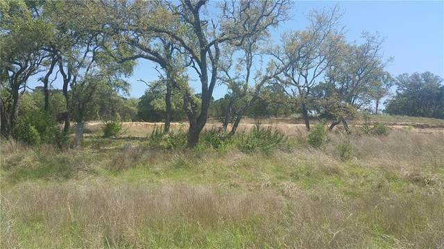 175 Evelyn Ct, Dripping Springs, TX 78620 (#8101432) :: Azuri Group | All City Real Estate