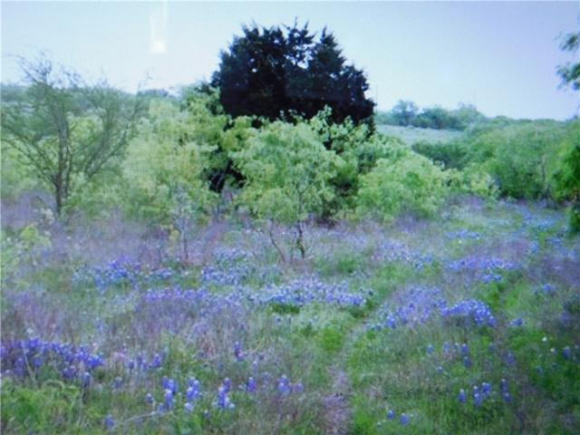 TBD Dry Creek Rd, Lockhart, TX 78644 (#8108128) :: The ZinaSells Group