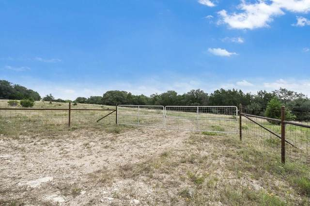 19000 Hwy 29, Liberty Hill, TX 78642 (#8131039) :: Green City Realty