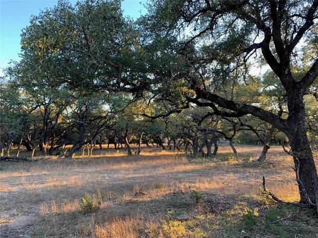 274 Ira Hill Ln, Dripping Springs, TX 78620 (#8208272) :: Sunburst Realty