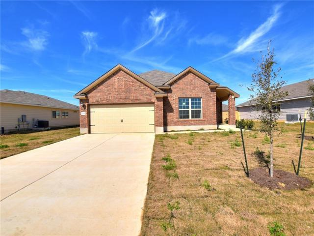 208 Evening Dusk Dr, Kyle, TX 78640 (#8292797) :: Watters International