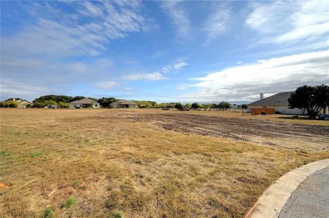 105 Valero Ct, Bertram, TX 78605 (#8381414) :: Green City Realty