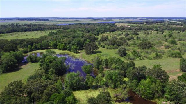 460 County Road 313, Rockdale, TX 76567 (#8409226) :: Papasan Real Estate Team @ Keller Williams Realty