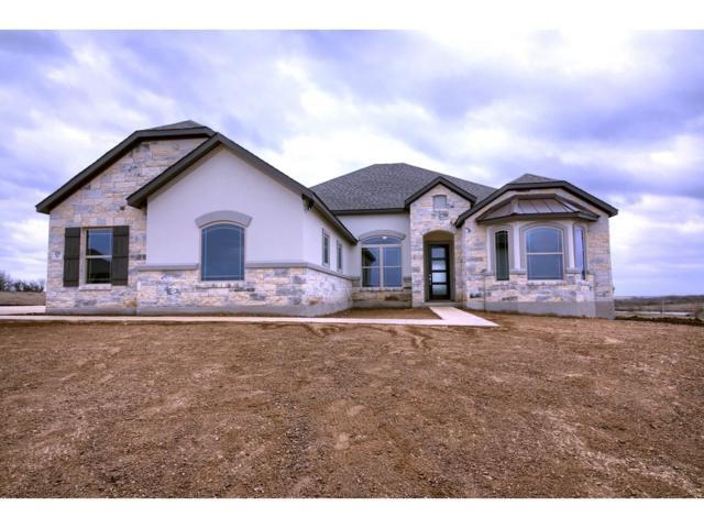 178 Hope St, Kyle, TX 78640 (#8448639) :: Zina & Co. Real Estate