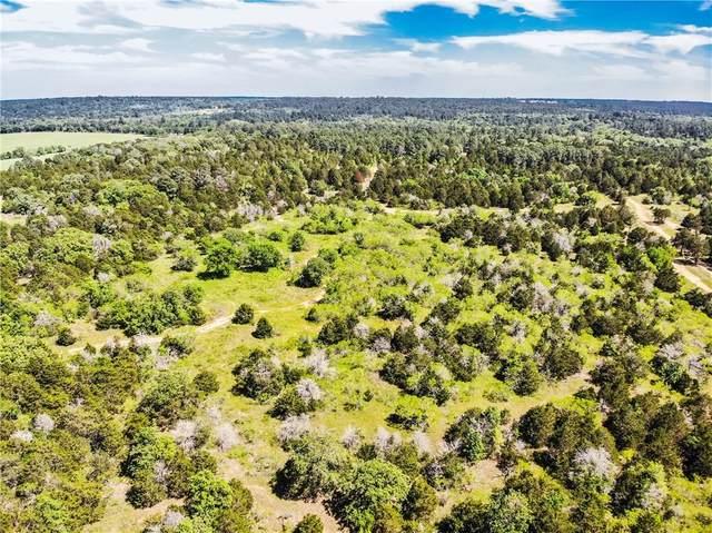 30 acres Herron Trl, Mcdade, TX 78650 (#8501849) :: The Heyl Group at Keller Williams
