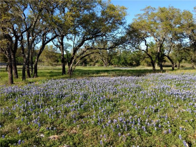 330 Escalar Dr, Kingsland, TX 78609 (#8501882) :: Realty Executives - Town & Country