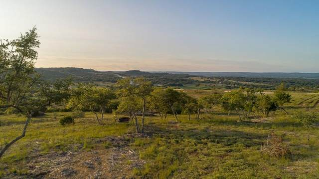 TBD Scenic Hills Court, Blanco, TX 78606 (MLS #8504704) :: Vista Real Estate