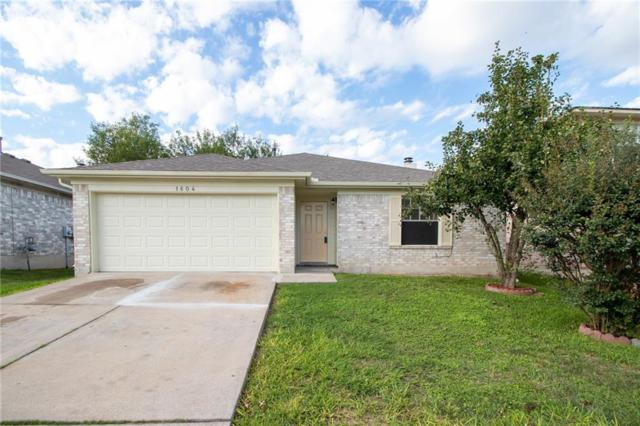 1604 Wild Orchard Dr, Pflugerville, TX 78660 (#8513242) :: Douglas Residential