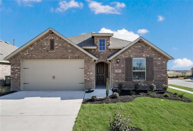 356 Tailwind Dr, Kyle, TX 78640 (#8608594) :: 12 Points Group