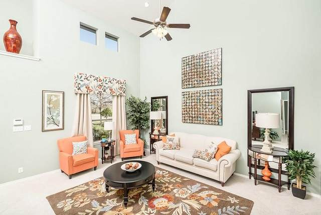 246 Salt Springs Rd, Kyle, TX 78640 (#8617089) :: Zina & Co. Real Estate
