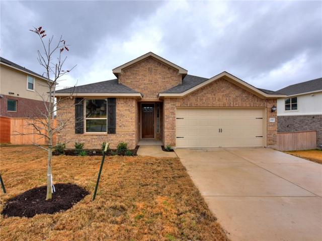 2517 Blended Tree Ranch Dr, Leander, TX 78641 (#8660195) :: The Heyl Group at Keller Williams