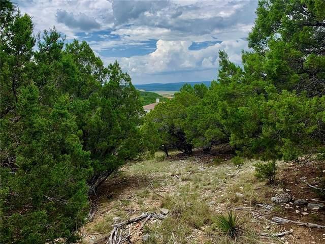 20827 El Dorado, Lago Vista, TX 78645 (MLS #8743423) :: Green Residential
