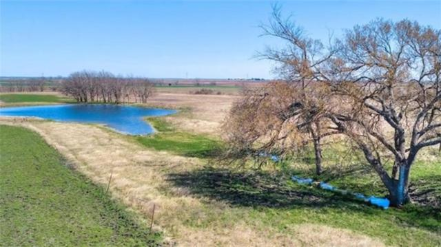 1570 Co Rd 318, Granger, TX 76511 (#8862079) :: Elite Texas Properties