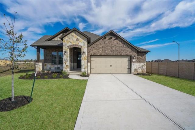 3728 Royal Tern, Pflugerville, TX 78660 (#8923914) :: Watters International