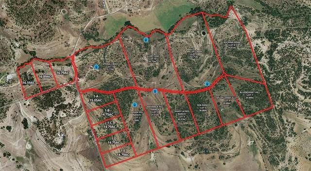 Tract 8 Cr 225, Briggs, TX 78608 (#8924516) :: Green City Realty