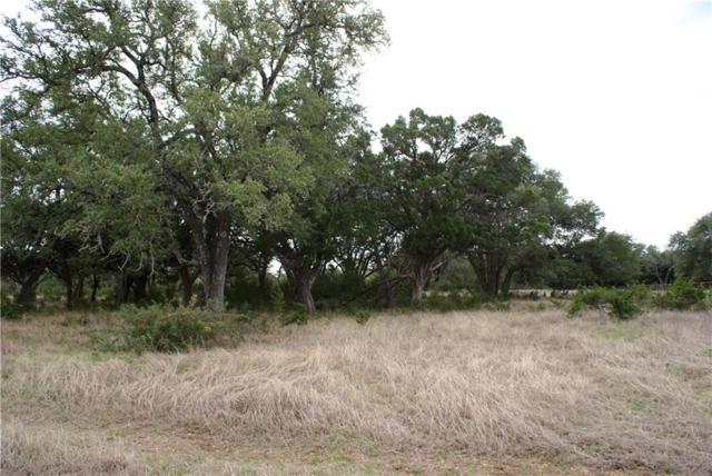 445 Horse Trail Dr A, Dripping Springs, TX 78620 (#8948187) :: Papasan Real Estate Team @ Keller Williams Realty