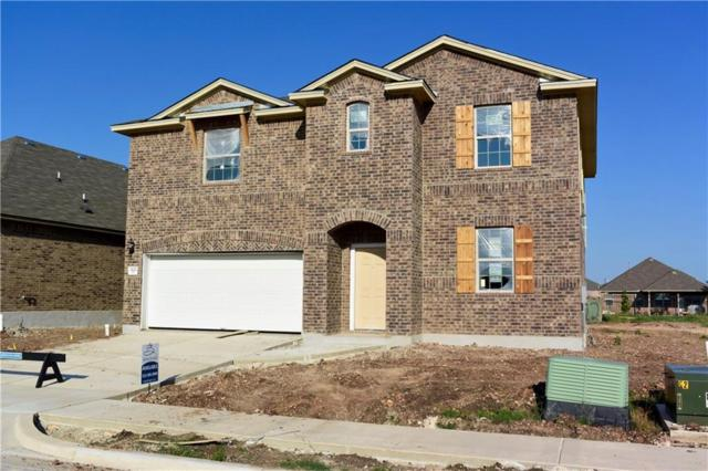 3222 Jacob Ln, San Marcos, TX 78666 (#8984046) :: Ana Luxury Homes