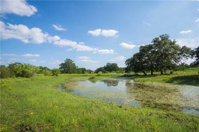 1115 Lightning Ranch Rd, Georgetown, TX 78628 (#9169275) :: Papasan Real Estate Team @ Keller Williams Realty