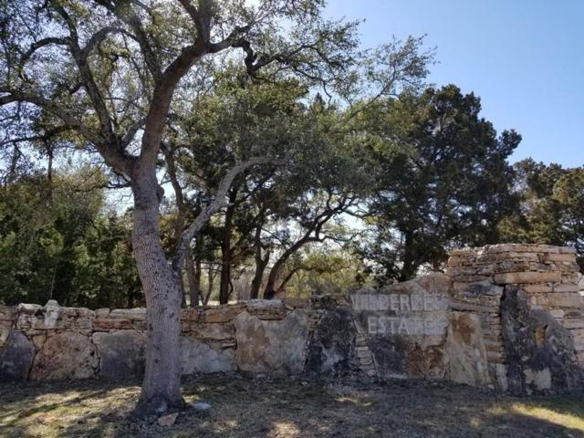 101 Wilderness Trl, Georgetown, TX 78633 (#9281786) :: Forte Properties