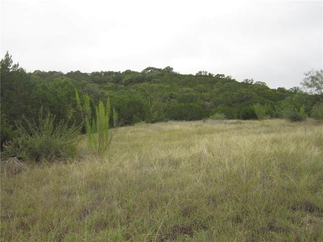 69 Montana Creek Xing Dr, Marble Falls, TX 78654 (#9453106) :: Azuri Group | All City Real Estate