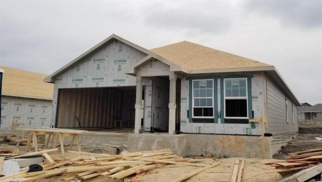 128 Dylan, San Marcos, TX 78666 (#9498743) :: Zina & Co. Real Estate