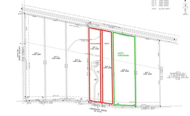 Lot 6 Charolais Dr, Bastrop, TX 78602 (#9502606) :: The Perry Henderson Group at Berkshire Hathaway Texas Realty