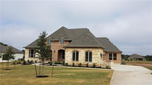 456 Bold Sundown, Liberty Hill, TX 78642 (#9508676) :: The Heyl Group at Keller Williams