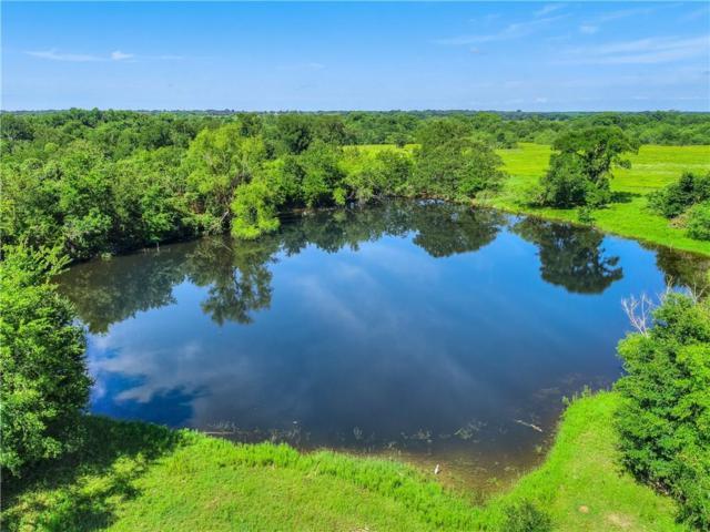 237 E Mcdonald Ln, Cedar Creek, TX 78612 (#9574442) :: The Heyl Group at Keller Williams