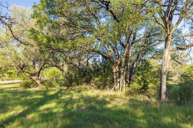 TBD Spanish Oak Trl, Manchaca, TX 78652 (#9656463) :: Zina & Co. Real Estate