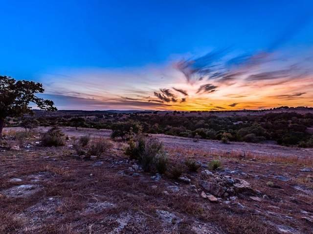 0 Byrd Ranch Rd, Johnson City, TX 78636 (#9717953) :: Green City Realty