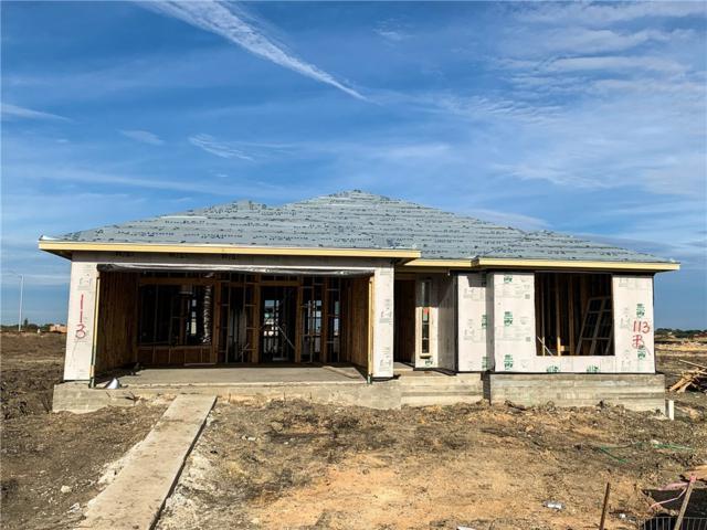 113 Cypress Hills Rd, San Marcos, TX 78666 (#9744456) :: The Heyl Group at Keller Williams