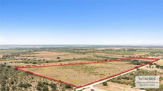 TBD 87 Highway, Brady, TX 76825 (#9928755) :: Papasan Real Estate Team @ Keller Williams Realty