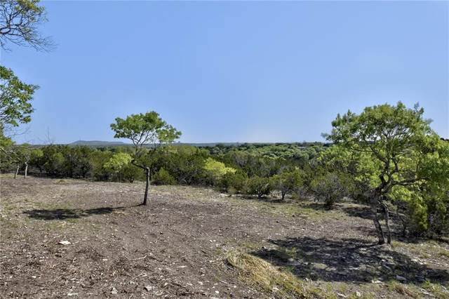 0 Hidden Valley Ranch Rd, Johnson City, TX 78636 (#9953740) :: The Perry Henderson Group at Berkshire Hathaway Texas Realty