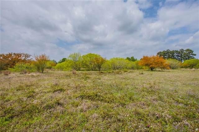 1341 Texas 95, Bastrop, TX 78602 (#9976523) :: Azuri Group | All City Real Estate
