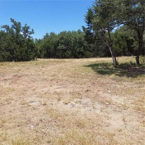 300 Waters Edge Cv, Dripping Springs, TX 78620 (#1038017) :: Azuri Group | All City Real Estate