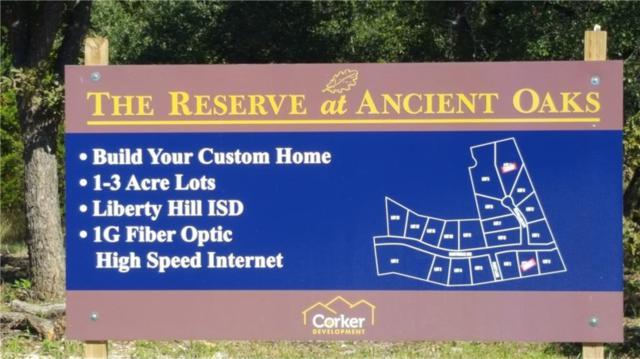 101 Ken Pelland Cv, Liberty Hill, TX 78642 (#1141087) :: Ana Luxury Homes