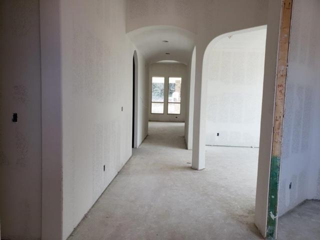 263 Riva Ridge Pl, Austin, TX 78737 (#1429541) :: Zina & Co. Real Estate
