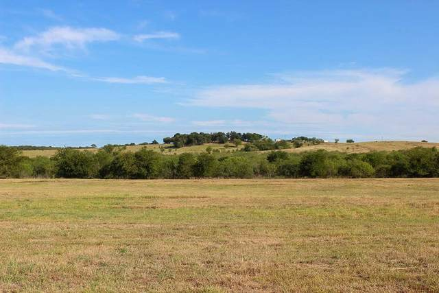 135 Black Ankle Rd, Lockhart, TX 78644 (#1435521) :: Ben Kinney Real Estate Team