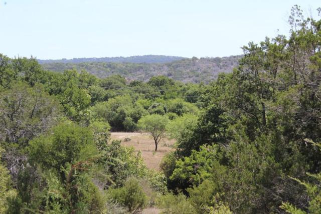 100 Rocky Hollow Dr, Burnet, TX 78611 (#1520893) :: The Perry Henderson Group at Berkshire Hathaway Texas Realty