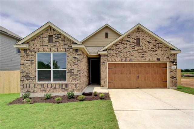 1702 Dragonfly Loop, Bastrop, TX 78602 (#1556784) :: The Perry Henderson Group at Berkshire Hathaway Texas Realty