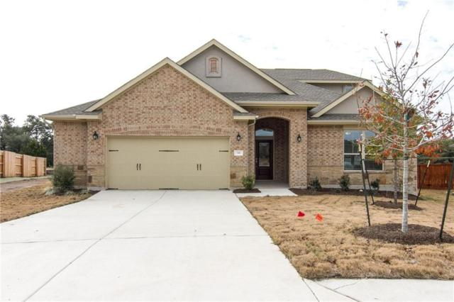 541 Scenic Bluff Dr, Georgetown, TX 78628 (#1565039) :: Papasan Real Estate Team @ Keller Williams Realty