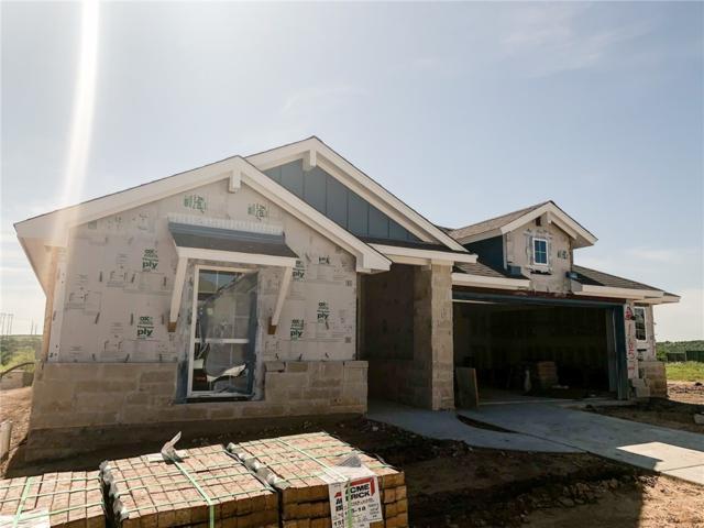 16521 Moonlit Path, Manor, TX 78653 (#1664633) :: Papasan Real Estate Team @ Keller Williams Realty