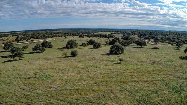 00 Gazelle Pt, Lampasas, TX 76550 (#1819900) :: RE/MAX IDEAL REALTY