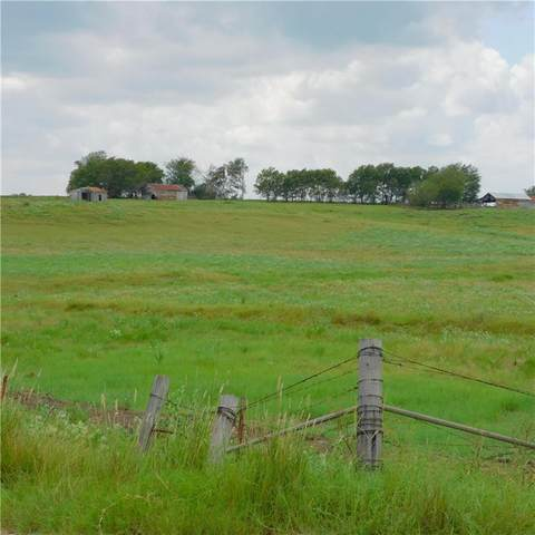 Tract 4  12.275 ac County Road 422, Thrall, TX 76578 (#2051199) :: Papasan Real Estate Team @ Keller Williams Realty