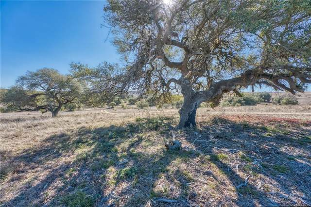 Lot 28 Stanton Ranch Rd, Johnson City, TX 78636 (#2215723) :: Lucido Global