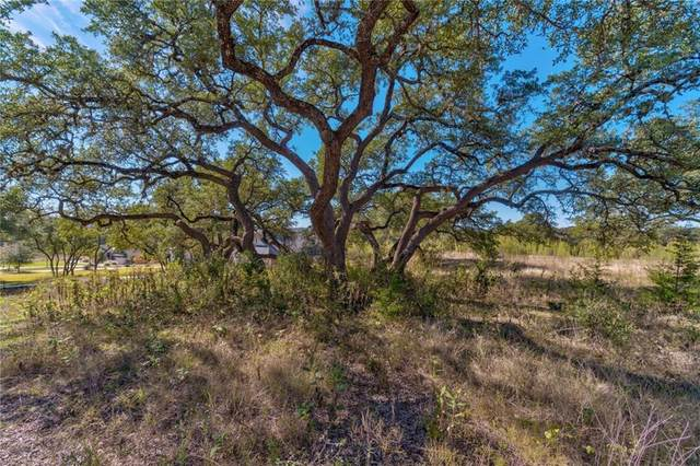 16917 Whispering Breeze Dr, Austin, TX 78738 (#2523603) :: RE/MAX IDEAL REALTY
