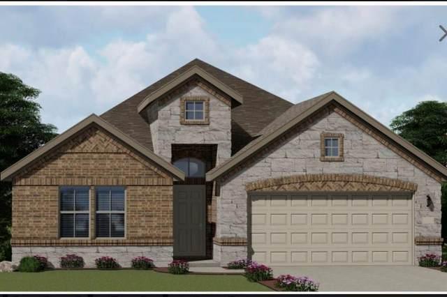 18916 Elk Horn Dr, Pflugerville, TX 78660 (#2548525) :: All City Real Estate