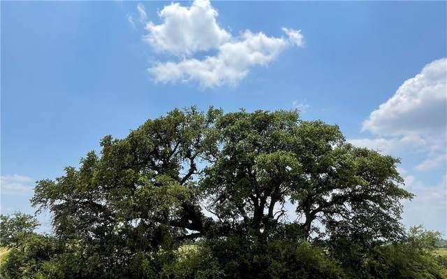 0 377 S. Highway, Brownwood, TX 76827 (#2675195) :: Papasan Real Estate Team @ Keller Williams Realty